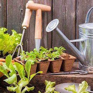 لوازم باغبانی